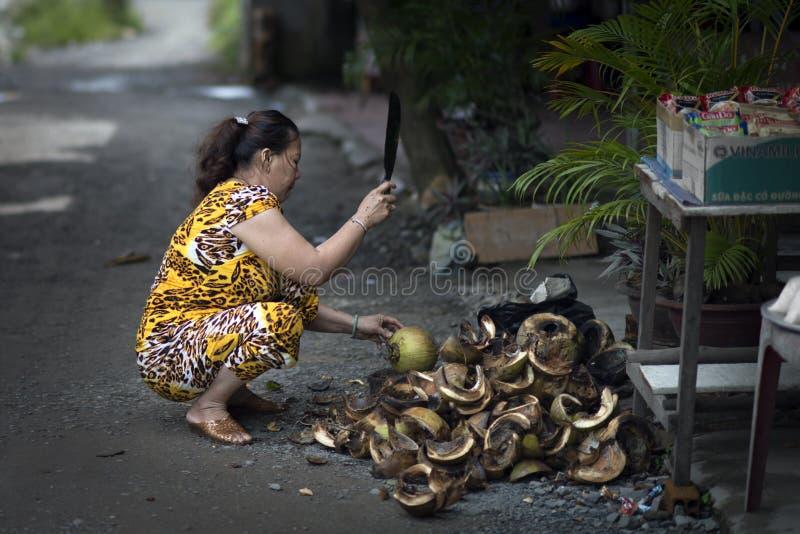 切水果市场的亚裔妇女椰子在湄公河地区,越南的街道 图库摄影