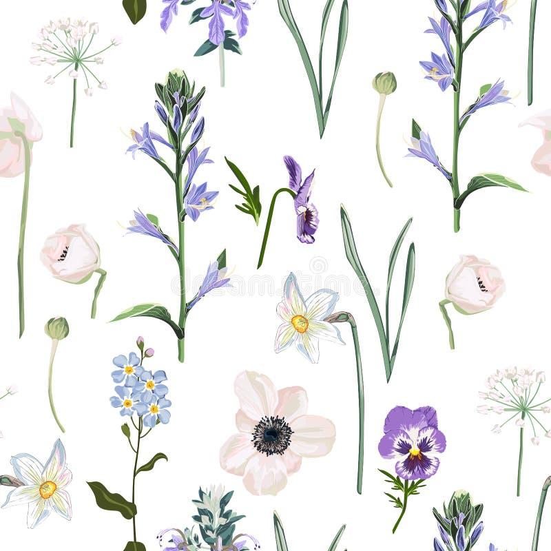 Łąka kwiaty, trawa, ogrodowi ziele Bezszwowy ziołowy tło w lekkich kolorach dla moda projekta ilustracja wektor