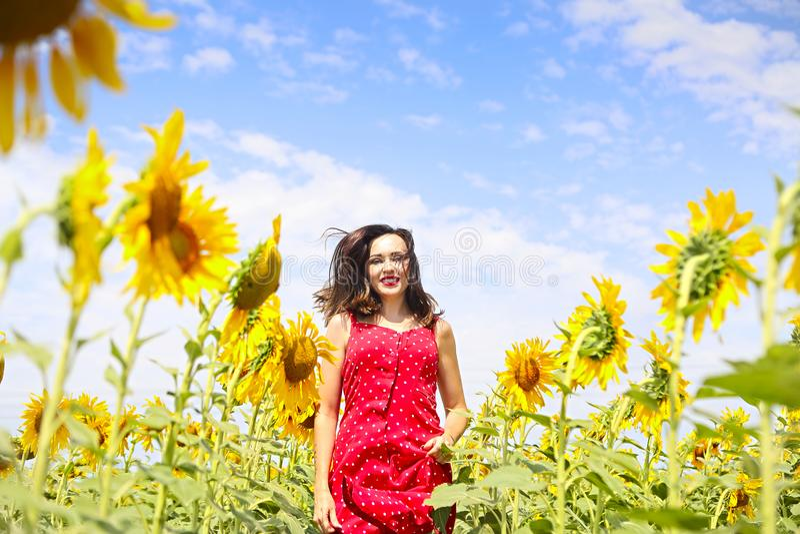 Ładna brunetki kobieta w słonecznika polu obrazy royalty free