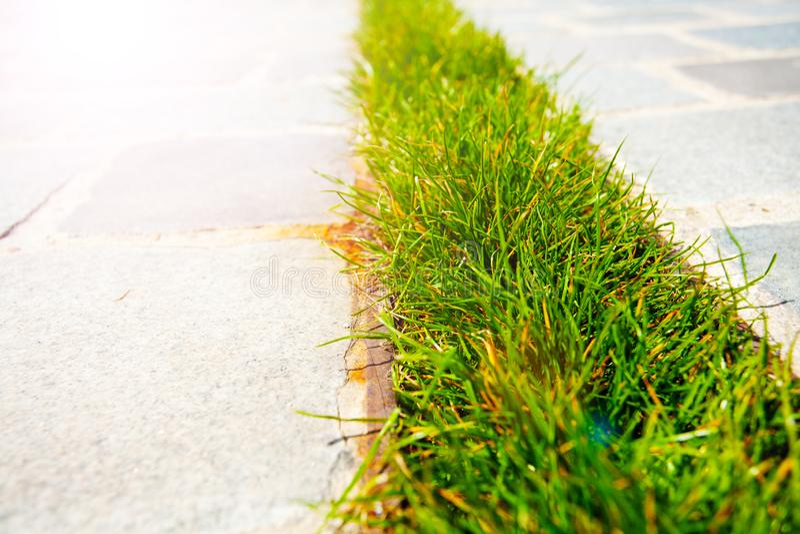Łata używać dekorować deszczówka odciek trawa fotografia royalty free