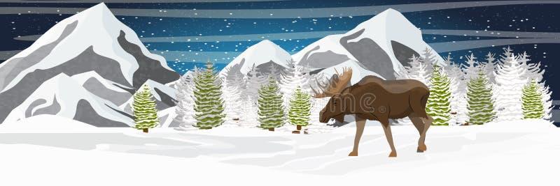Łoś z dużymi rogami chodzi przez śnieżystej doliny Góry i świerkowy las ilustracja wektor