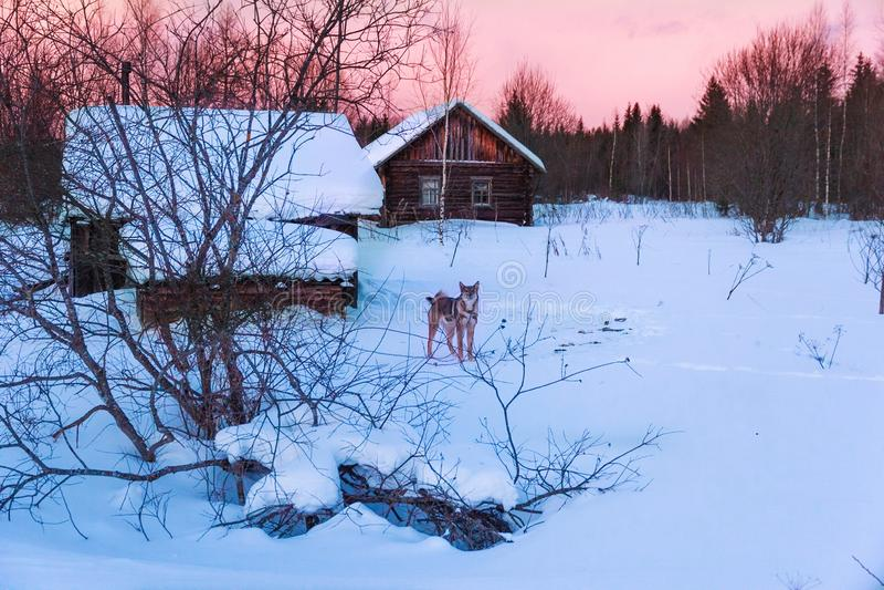 冬天日落在老猎人村庄 库存图片