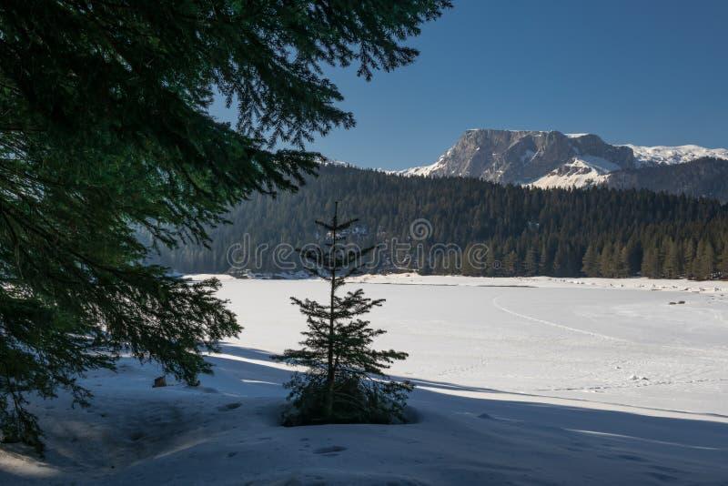 冬天风景在黑山 免版税库存照片