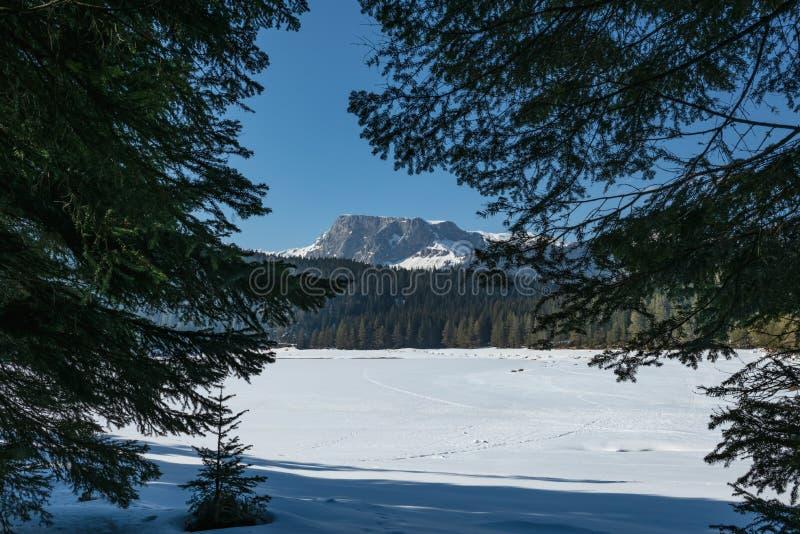 冬天风景在黑山 免版税库存图片