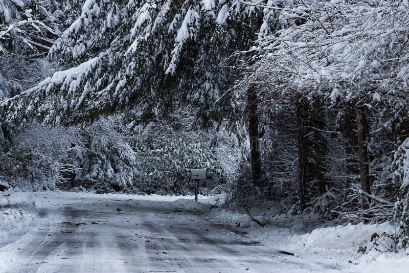 冻路通过一农村在冬天 免版税库存图片