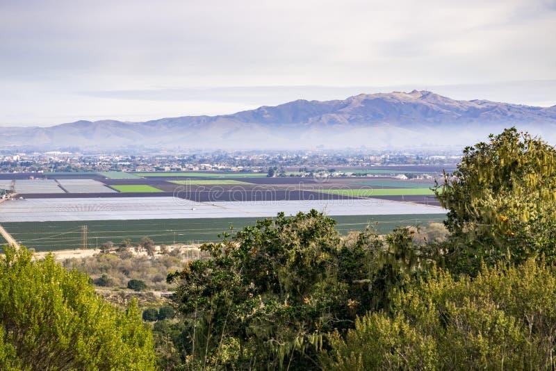 农业领域,盐沼,加利福尼亚 免版税库存照片