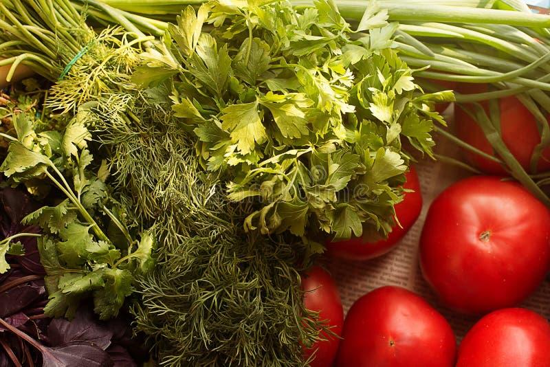 农厂蕃茄和在阳光下新近地被采摘的荷兰芹和莳萝葱 顶视图 免版税库存图片