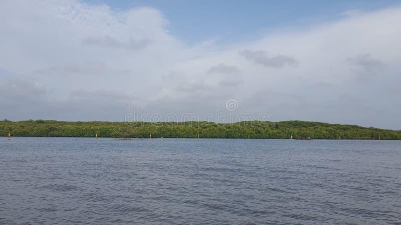 内贡博的盐水湖在斯里兰卡 免版税库存图片