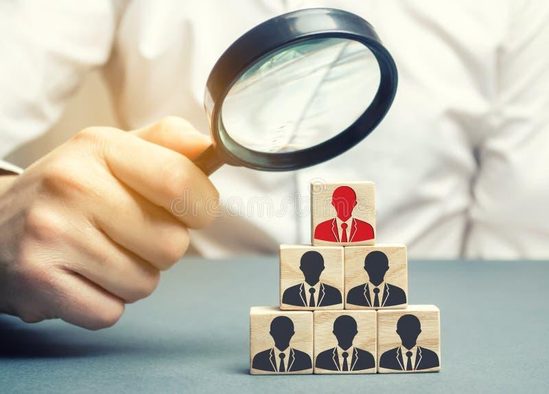 商人拿着在立方体的一个放大镜与雇员的图象 职员补充 选择队的一个人 免版税库存图片