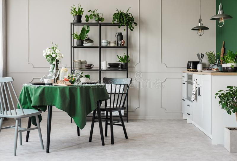 典雅的灰色和绿色厨房在经济公寓住宅里 免版税库存照片