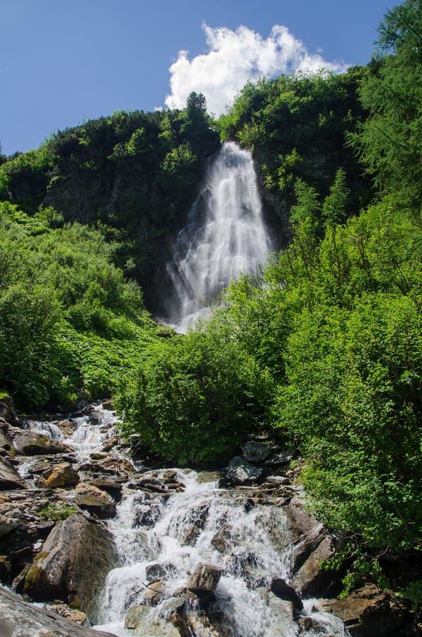 克里姆尔瀑布在高山森林,奥地利里 库存图片