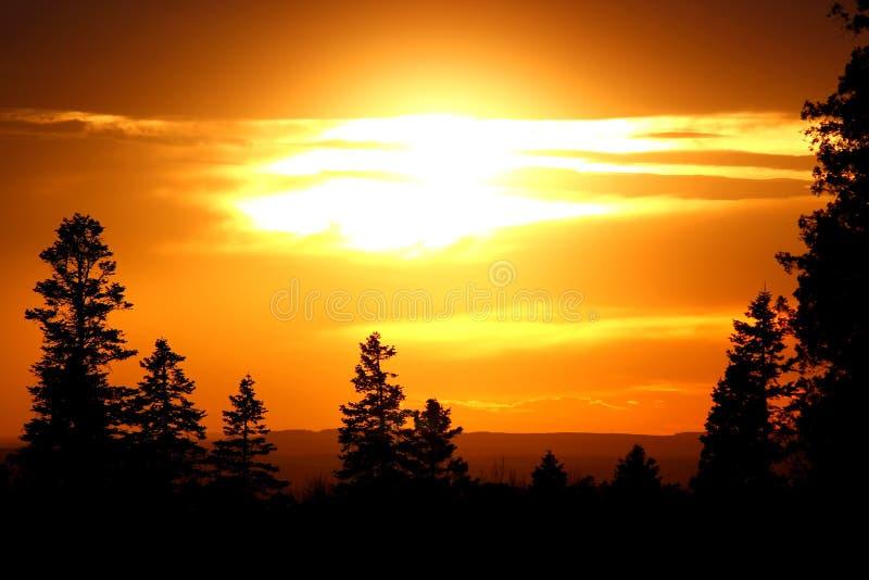 剪影视图:在高地的美好的日落与山,自然背景 令人惊讶的forrest小山风景 库存图片