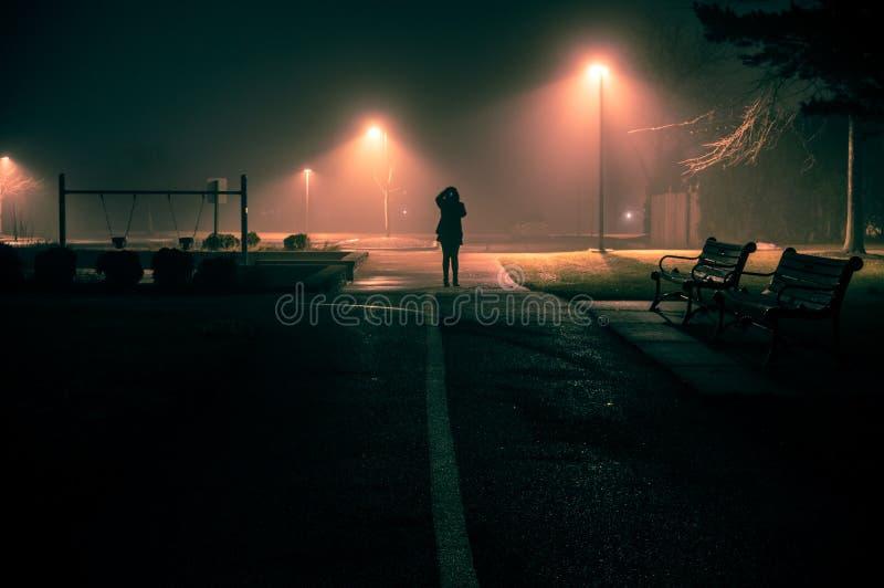 图在黑暗的有雾的夜拍照片在公园 库存图片