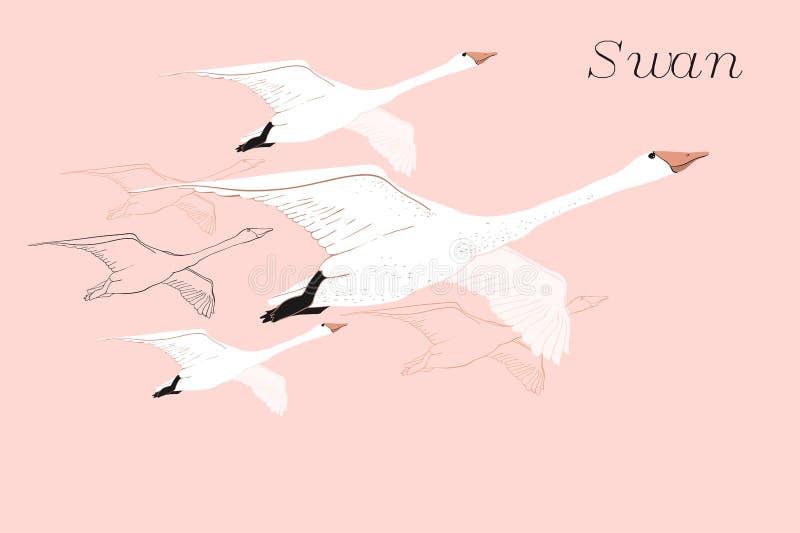 图画飞行天鹅的例证 手拉,与鸟的乱画图形设计 在蓝色背景的被隔绝的对象 库存图片