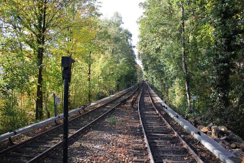 围拢由林木线的铁轨在火车站时,空的平台等待火车货箱,旅游业旅途 免版税库存图片