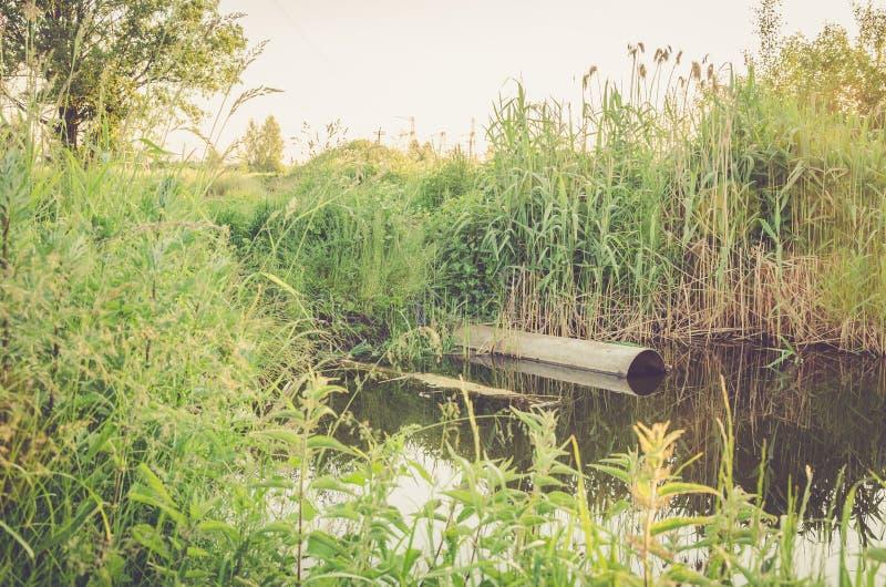 Ścieki przepływ od wodnej drymby w rzekę, ekologii pojęcie/: kanał ściekowy nalewa za odpady rzeka obrazy stock