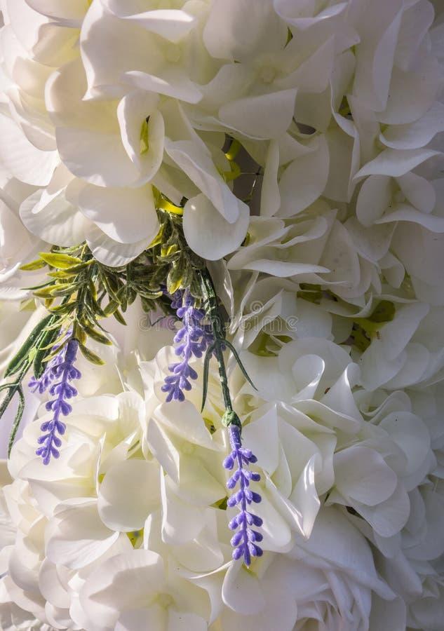 Ślubny tło świezi kwiaty biel, menchii hortensja i róże i fotografia stock