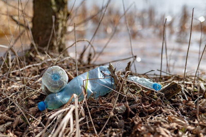 Śmiecący krawędzią jezioro plastikowymi butelkami Zanieczyszczający środowisko w lasowym terenie zdjęcie stock