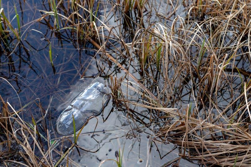 Śmiecący krawędzią jezioro plastikowymi butelkami Zanieczyszczający środowisko w lasowym terenie fotografia royalty free