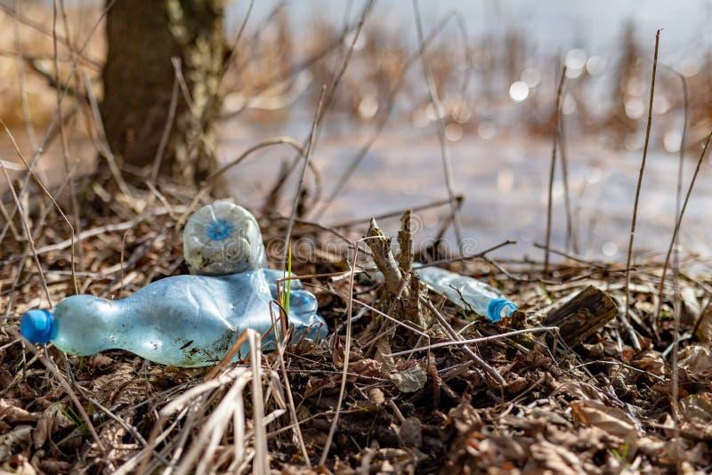 Śmiecący krawędzią jezioro plastikowymi butelkami Zanieczyszczający środowisko w lasowym terenie zdjęcia royalty free