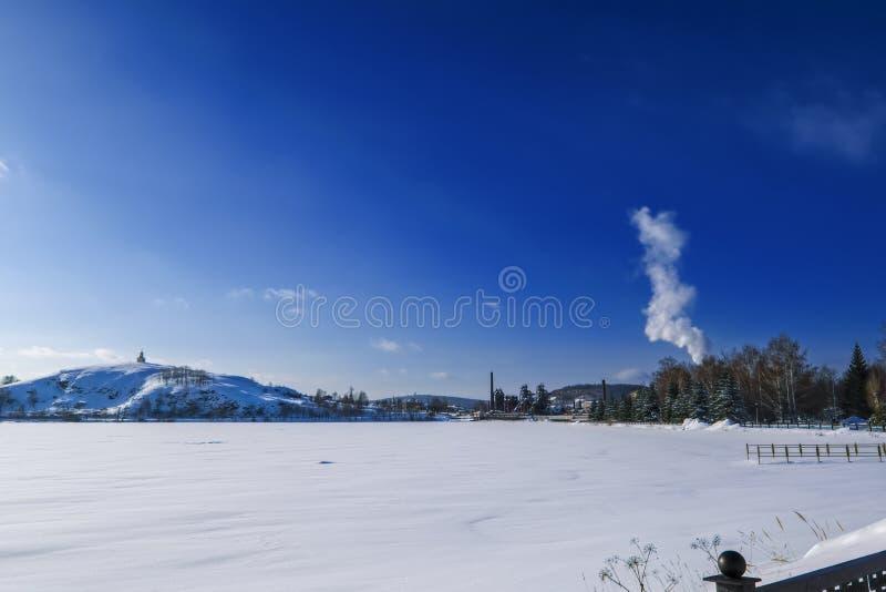 śnieżne aleje park na pogodnym zima dniu obraz royalty free