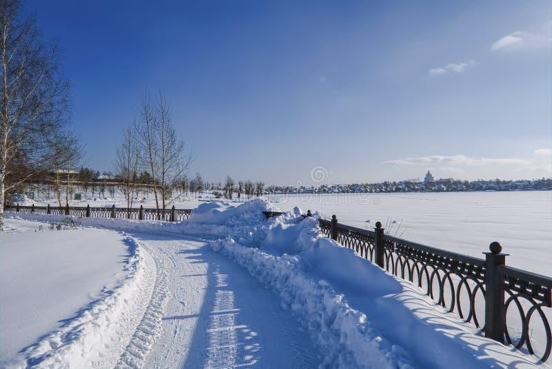 śnieżne aleje park na pogodnym zima dniu fotografia royalty free
