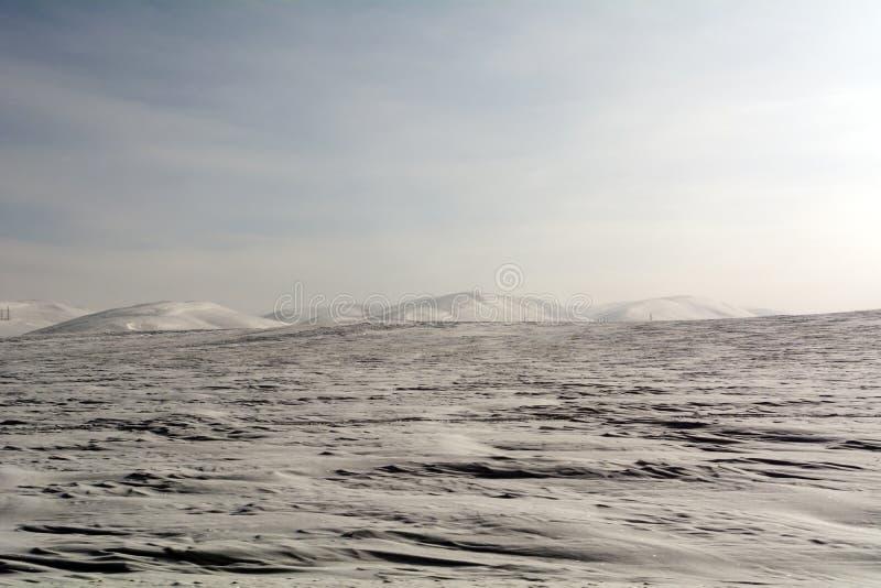 Śnieżny pole i wzgórza w Orenburg regionie obraz royalty free