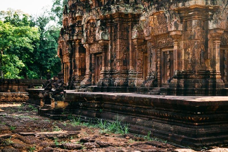 Świątynie Angkor Wat w Kambodża, ta Prohm, Siem Przeprowadzają żniwa zdjęcia stock