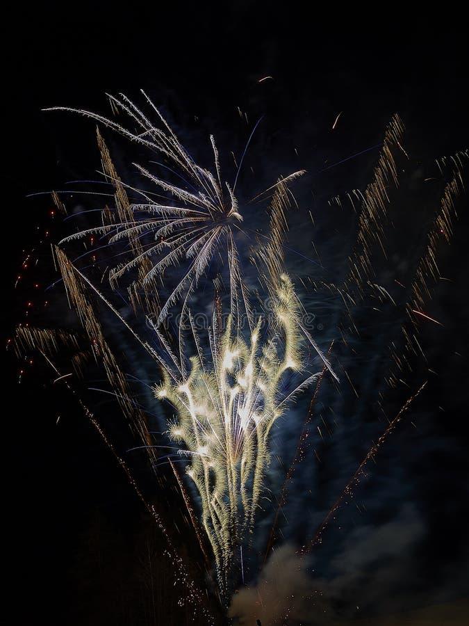 Świętowanie z fajerwerkami w ciemnym niebie zdjęcia royalty free