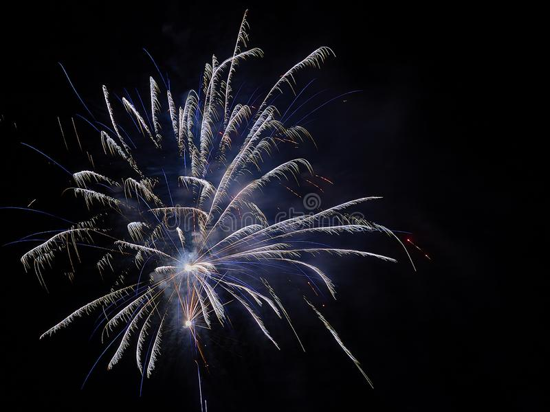 Świętowanie z fajerwerkami w ciemnym niebie obraz royalty free