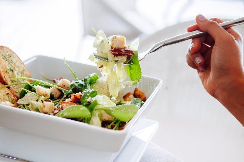 Świeża zielona szpinak sałatka z bekonem, crouton i serem crispy, obraz royalty free