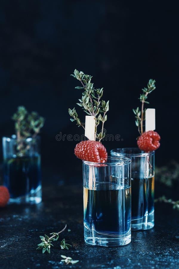Świeży malinka koktajl z sokiem, zimnym lato cytrusa odświeżenia napojem lub napojem z lodem, zdjęcie stock
