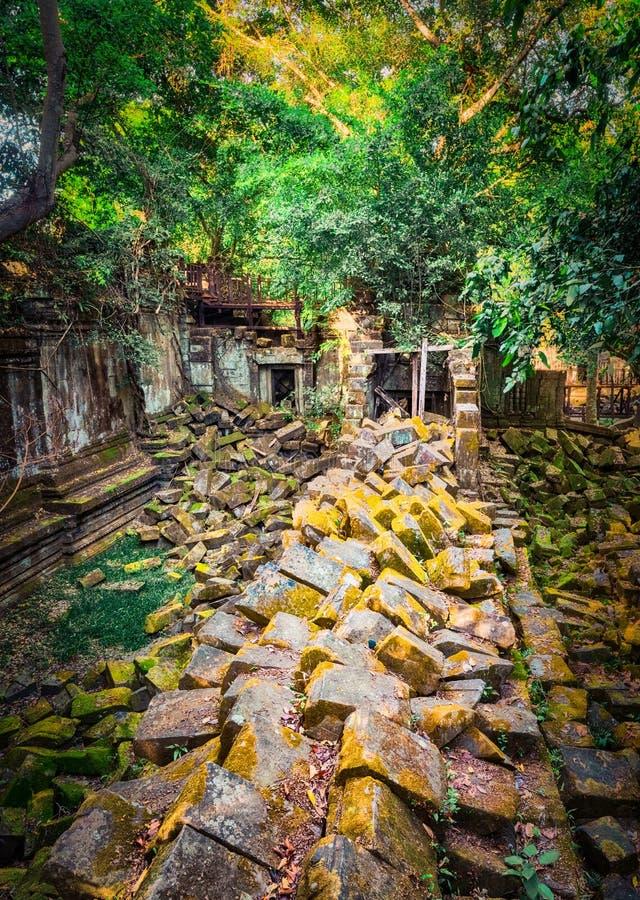 崩山大仑Mealea或桶盖Mealea寺庙 angkor banteay柬埔寨湖lotuses收割siem srey寺庙 柬埔寨 库存图片
