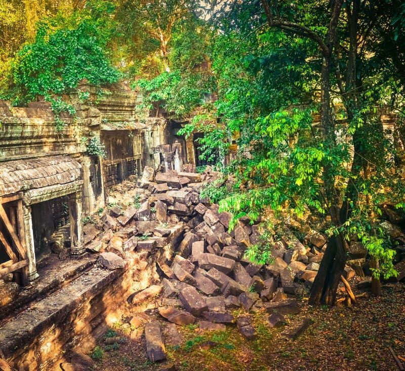 崩山大仑Mealea或桶盖Mealea寺庙 angkor banteay柬埔寨湖lotuses收割siem srey寺庙 柬埔寨 免版税库存照片