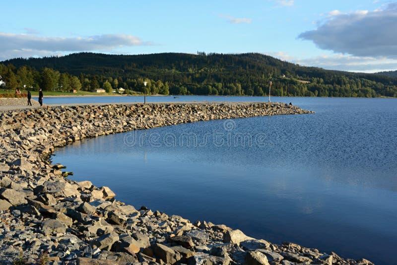 Åumava zatoczka na jeziorze - Lipno - obraz royalty free