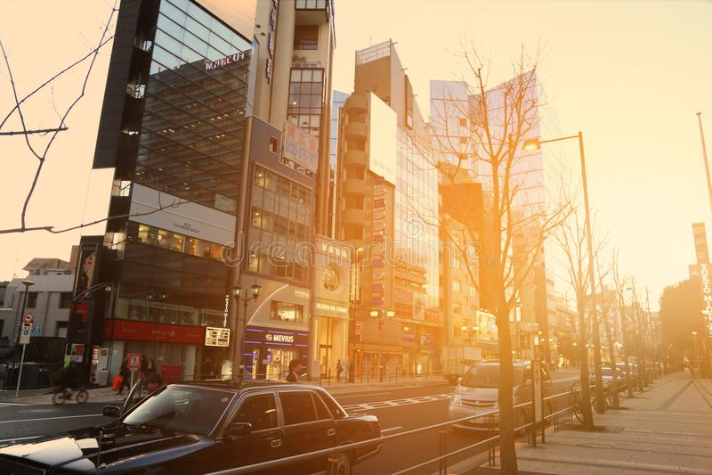 Åk taxi i gatan i det Roppongi området i strålarna av solnedgången, Tokyo, Japan arkivfoton