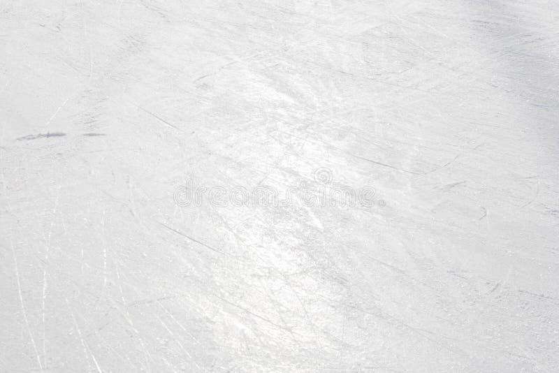 åka skridskor för isbana royaltyfri bild