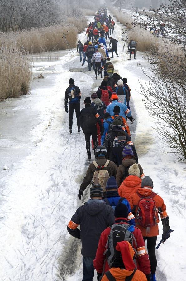Åka skridskor på naturlig is i Nederländerna arkivbild