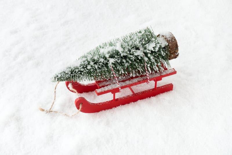 Åka släde i snö som bär ett julgranträd royaltyfri foto