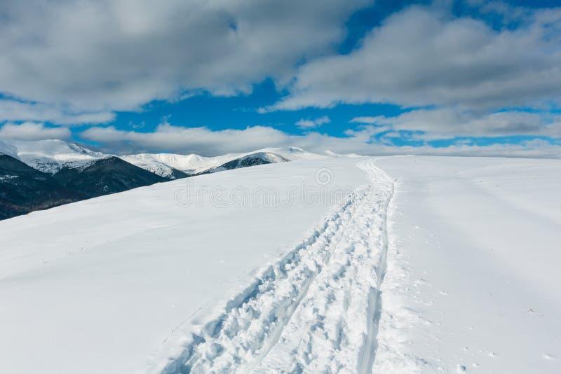 Åka släde spåret och fotspår på överkant för vinterbergkulle royaltyfri foto
