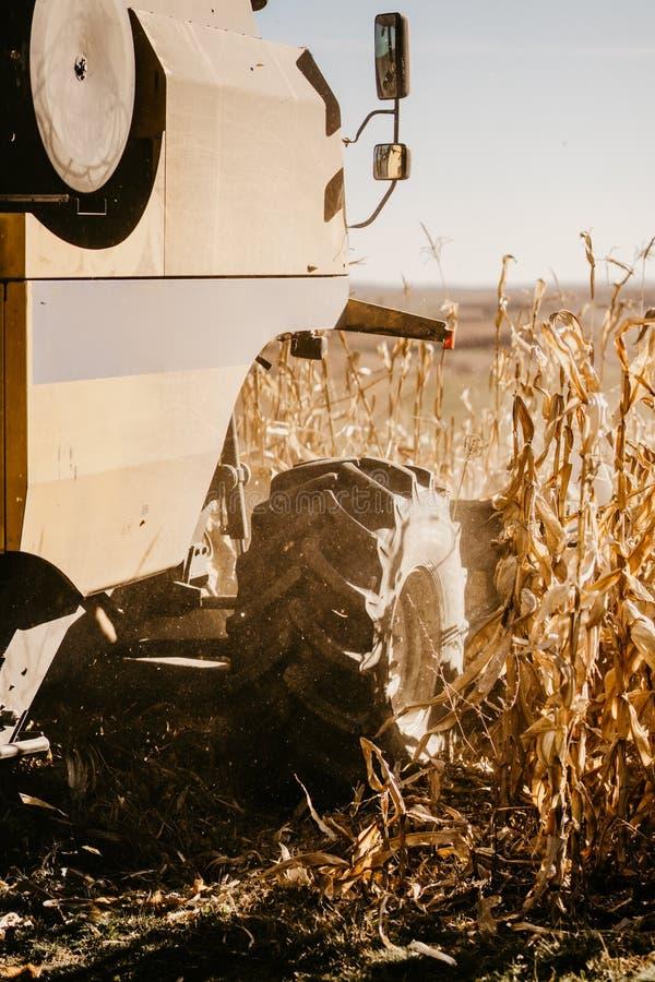 Åkerbruk bransch och att skörda med sammanslutningen och närbild av skördar för hjul in fotografering för bildbyråer
