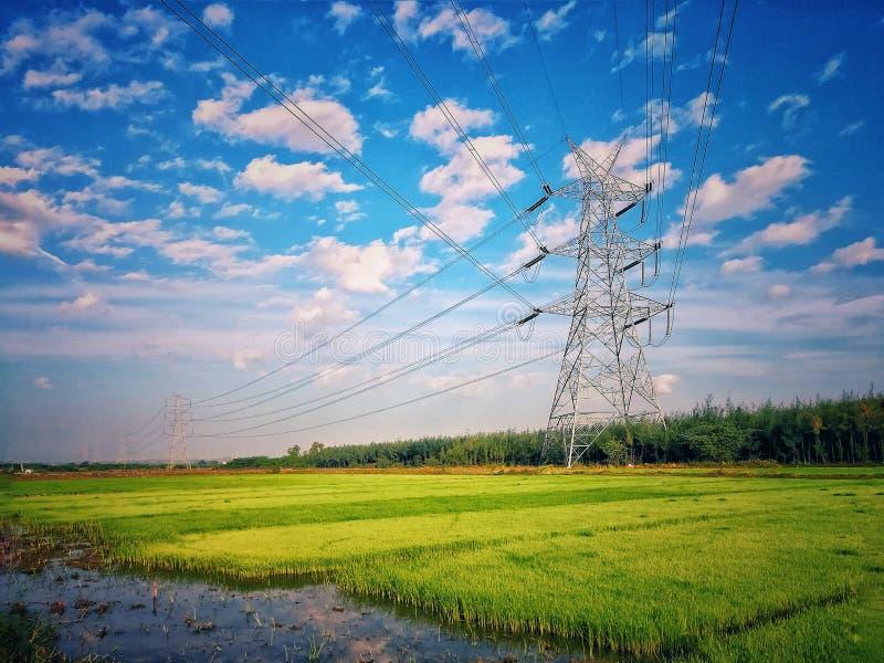 Åkerbruk gårdelektricitet royaltyfri bild