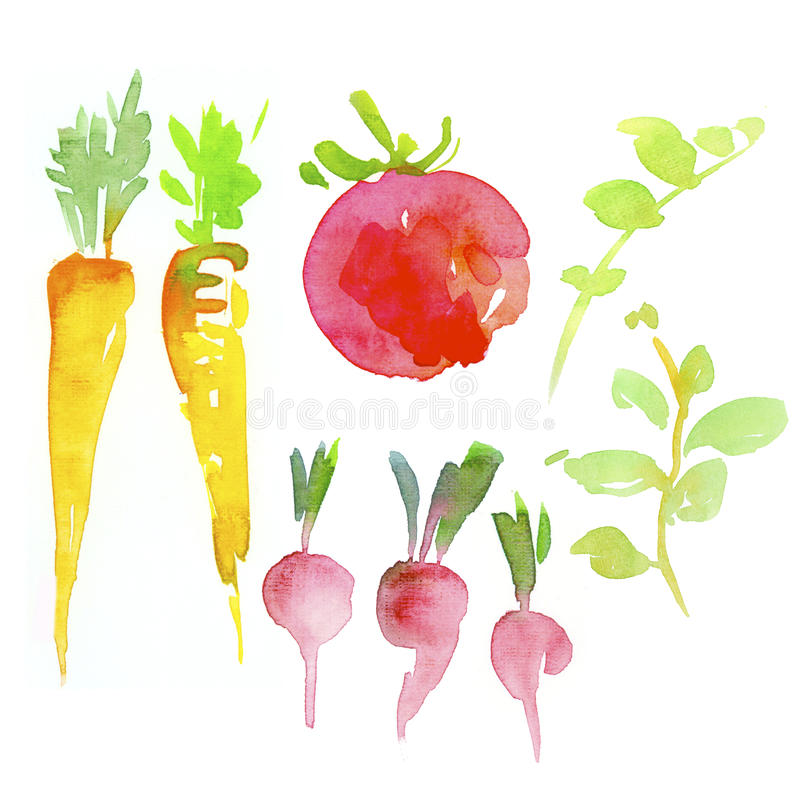 åkerbruka produktgrönsaker för ny marknad stock illustrationer