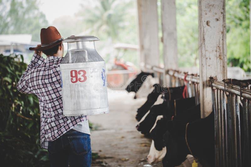 Åkerbrukt bransch-, bruka, folk- och djurhållningbegrepp - ung man eller bonde med hinken som promenerar ladugården royaltyfri fotografi