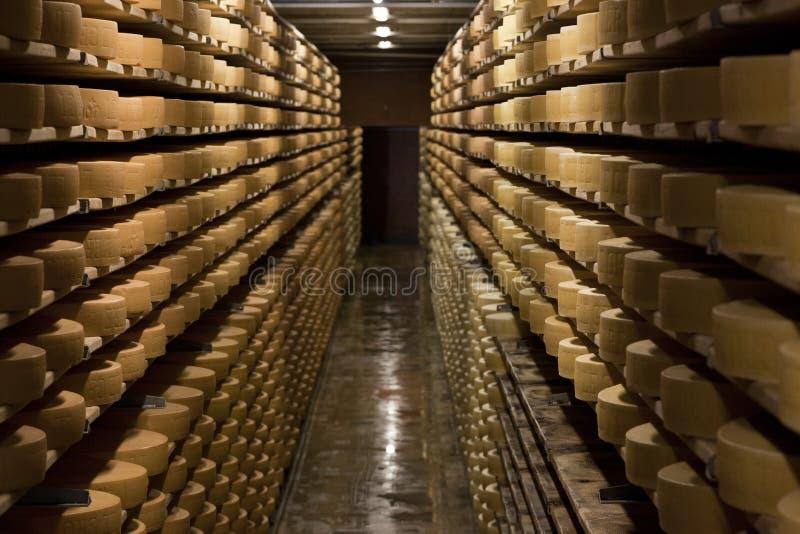 Åldras ost i en källare av den Maison du Gruyere ostfabriken i Schweiz Gruyere är en allmänt bekant berömd schweizisk ost fotografering för bildbyråer