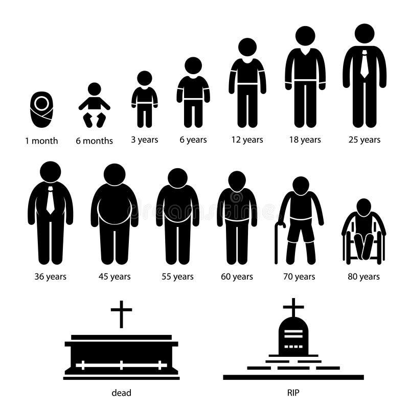 Åldras växa för manmänniska processaa royaltyfri illustrationer