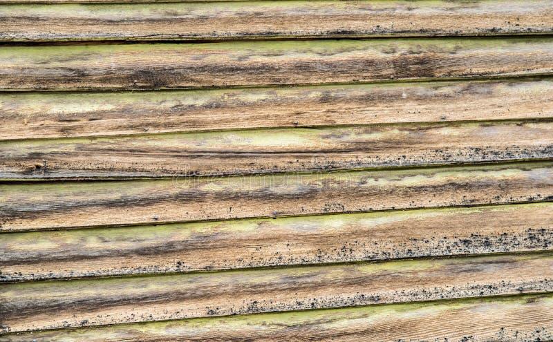 Åldrig sidingbakgrundstextur royaltyfri foto
