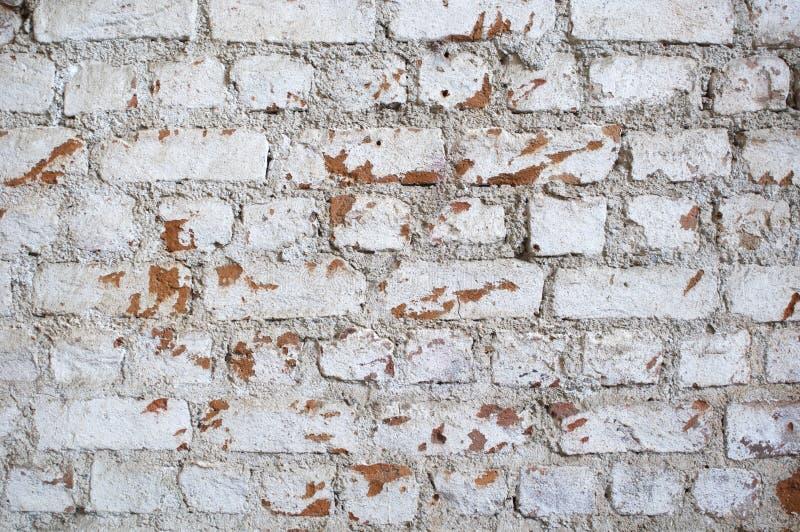 Åldrig Tegelstenvägg Arkivfoto