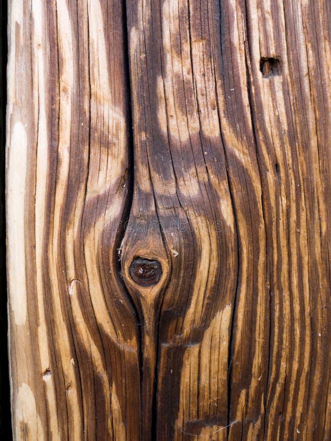 Åldrig träbrun planka arkivbilder