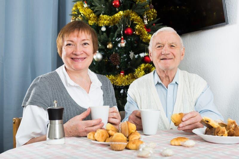 Åldriga par som tycker om julafton royaltyfri fotografi